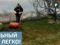 Время сеять: профессиональные и любительские рекомендации для создания газона